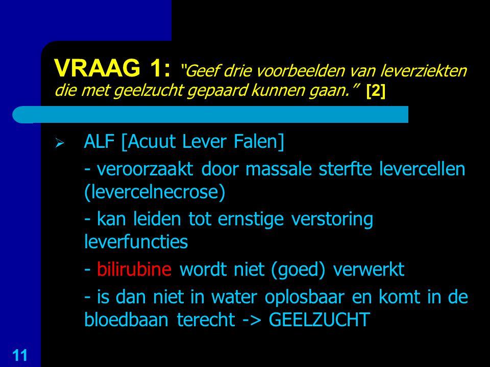 VRAAG 1: Geef drie voorbeelden van leverziekten die met geelzucht gepaard kunnen gaan. [2]